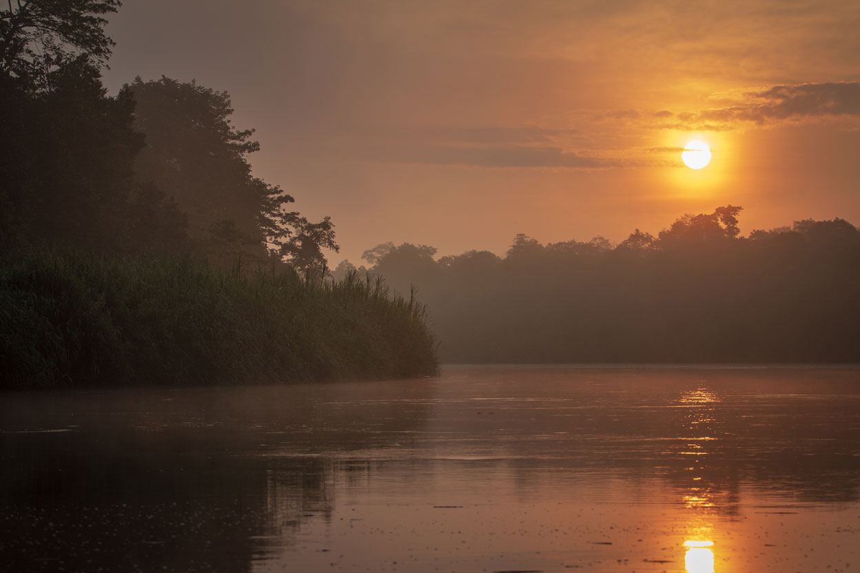 Sunrise over the Kinabatangan river in Borneo